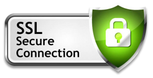 Nine1Metal Secure Connection SSL
